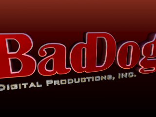 BadDog Digital Productions, Inc.logo image